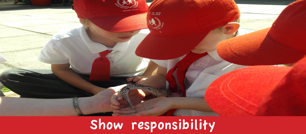 Show responsibility